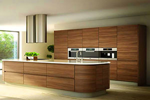 Veneer Modular Kitchen Design