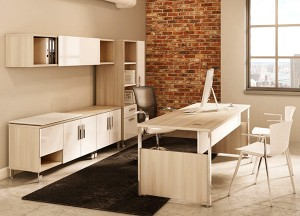 Contemporary-Office-Furniture-Desk-Type--(6)