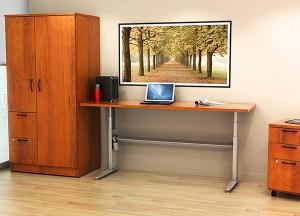 Customised-Office-Furniture-Desk--(10)